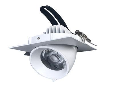 Đèn LED Downlight 25W MDL112
